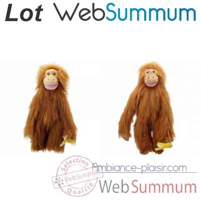 Lot grands singes orang-outan -LWS-345